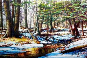 Frank Wengen landscape Shingle Run, Ricketts Glen State Park watercolor