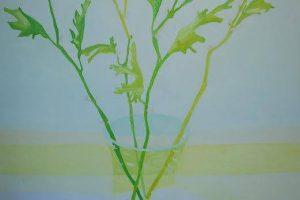 Julia Einstein Chrysanthemum oil on linen