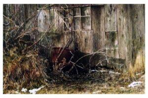 Frank Wengen Barn Textures watercolor